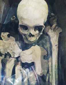 batch_Squelette4