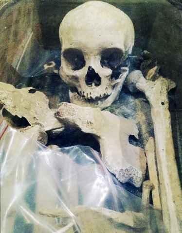 batch_Squelette6